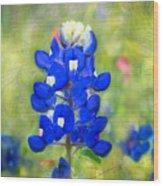 Blue-est Of Blues Wood Print