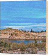 Blue Evening In Ludington State Park Wood Print