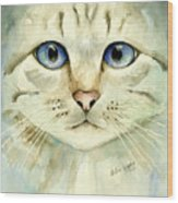 Blue-eyed Cat Wood Print