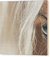 Blue Eyed Horse Wood Print
