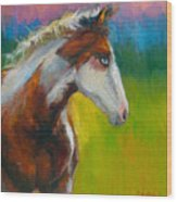 Blue-eyed Paint Horse Oil Painting Print Wood Print