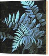 Blue Fern Wood Print