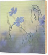 Blue Flex Flower. Nostalgic Wood Print