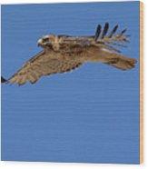 Blue Flight Wood Print