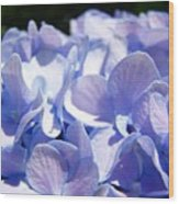 Blue Floral Art Prints Blue Hydrangea Flower Baslee Troutman Wood Print