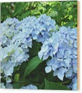 Blue Floral Hydrangea Flower Summer Garden Basle Troutman Wood Print