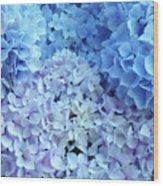 Blue Floral Hydrangreas Flowers Art Baslee Troutman Wood Print