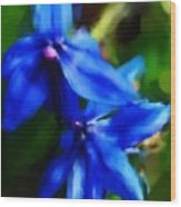 Blue Flower 10-30-09 Wood Print