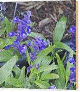 Blue Flower B6 Wood Print