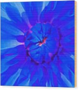 Blue Flower Wood Print