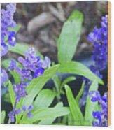 Blue Flowers B5 Wood Print