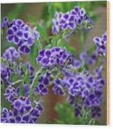 Blue Flowers Card Wood Print