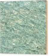 Blue Fossil Wood Print