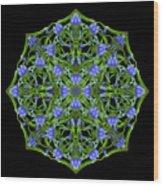 Blue Gentian Lattice Wood Print