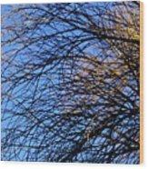 Blue Grace Wood Print