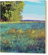 Blue Grass Sunny Day Wood Print