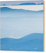 Blue Haze Wood Print by Evgeni Dinev
