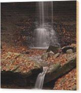 Blue Hen Falls And Cascade Wood Print