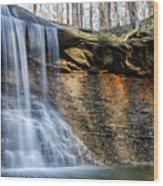 Blue Hen Falls Wood Print