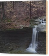 Blue Hen Falls Series II Wood Print
