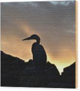 Great Blue Heron At Sunset Wood Print