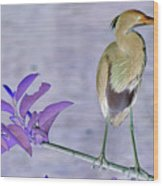 Blue Heron Colorized Wood Print