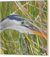 Blue Heron Hunting Wood Print