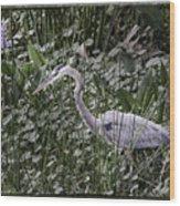 Blue Heron In Grass 4566 Wood Print