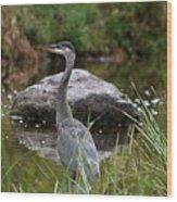 Blue Heron In River Wood Print