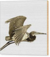Blue Heron In Sepia Wood Print