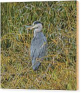 Blue Heron In The Autumn Colours Wood Print