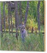Blue Heron-in The Swamp Wood Print