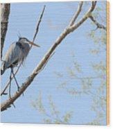 Blue Heron In Tree Wood Print