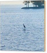 Blue Heron On The Chesapeake Wood Print