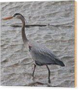 Blue Heron  On The Lake Wood Print