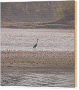 Blue Heron On The Yellowstone Wood Print
