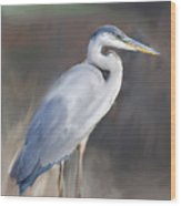 Blue Heron Painting  Wood Print by Don  Wright