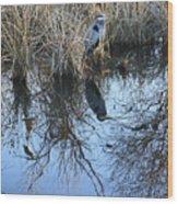 Blue Heron. Wood Print