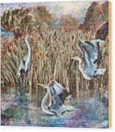 Blue Herons And Cats Wood Print