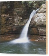 Blue Hole In Spring #1 Wood Print