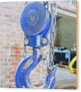 Blue Hook Wood Print