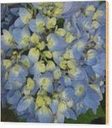 Blue Hydrangea Bouquet Wood Print