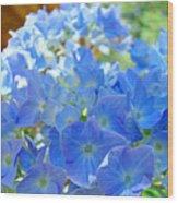 Blue Hydrangea Flowers Art Prints Summer Hydrangeas Baslee Wood Print