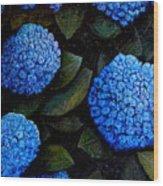 Blue Hydrangeas Wood Print