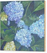 Blue Hydranges Wood Print