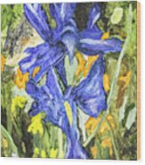 Blue Iris Painting Wood Print