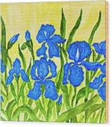 Blue Irises Wood Print