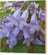 Blue Jacaranda Wood Print