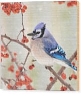 Blue Jay In Snowfall Wood Print