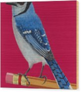 Bluejay Perched On Pencil Wood Print